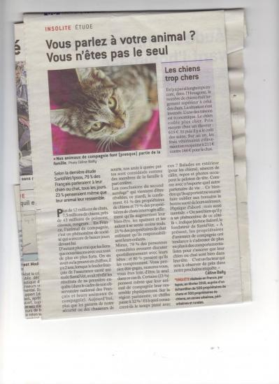 Article presse animaux 001